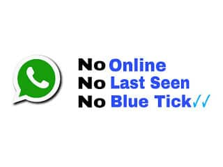 Hide online last seen blue tick in whatsapp