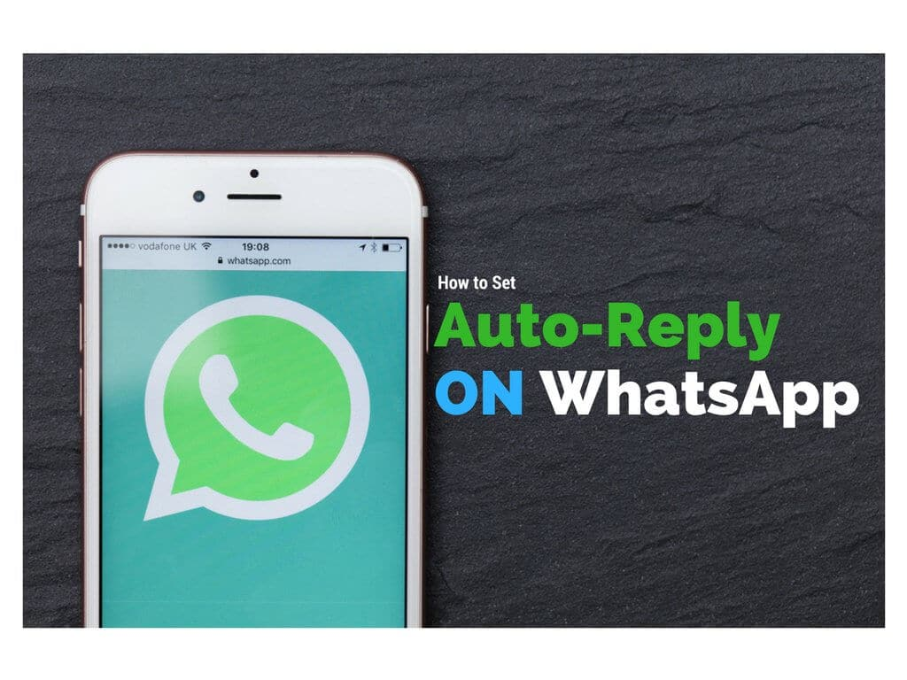 autoreply whatsapp