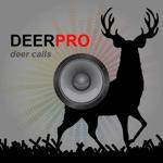 Deer Calls Deer Sounds for Deer Hunting