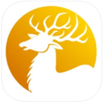 Deer Calls Hunting Sounds