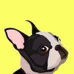 Dog whistle training app